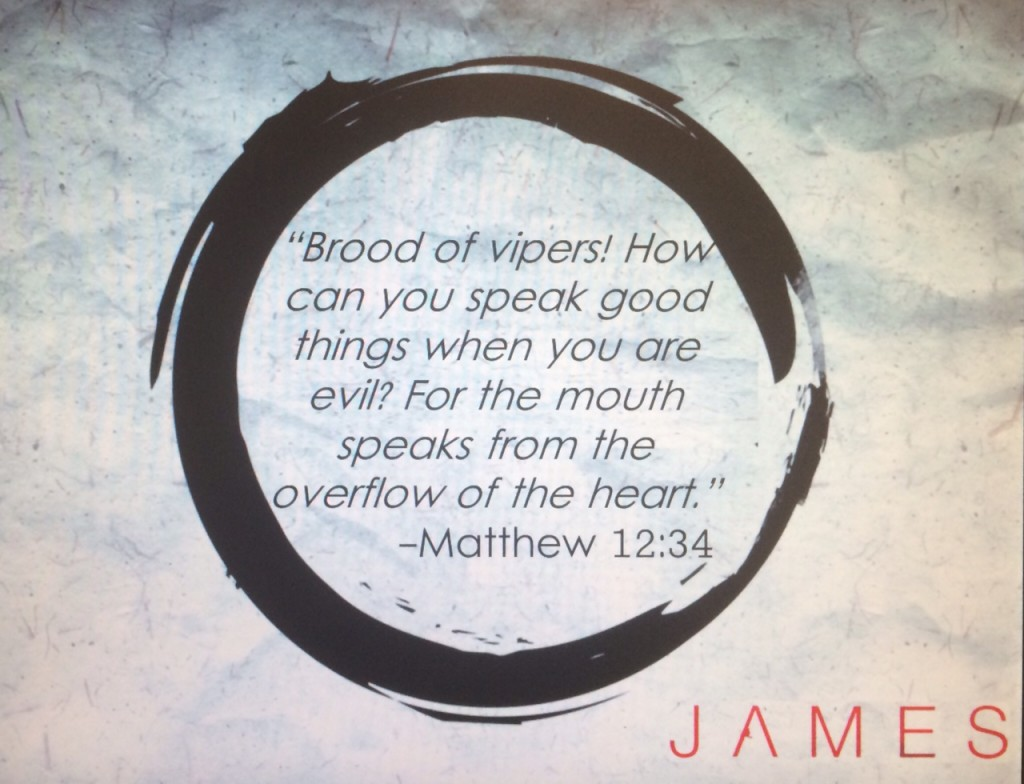 james 3 overflow