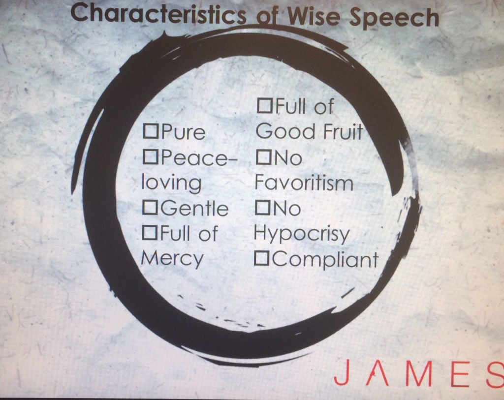 james 3 wise speech
